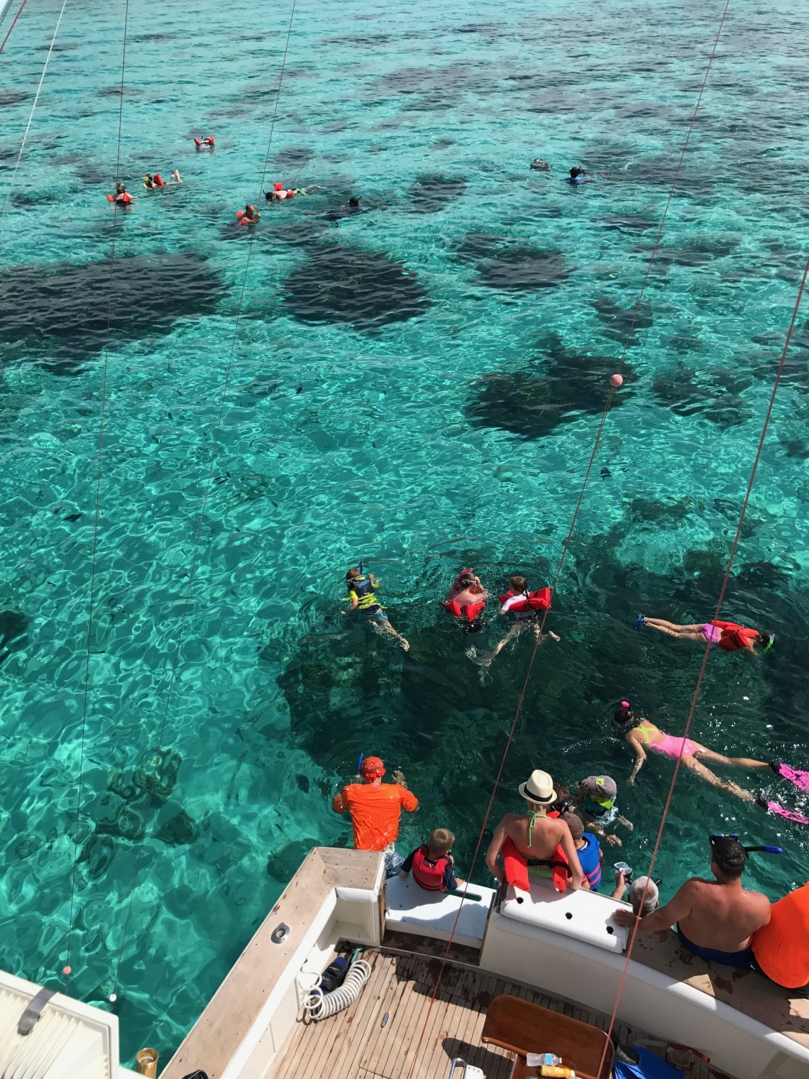 Best Snorkelling Spots in Cayman