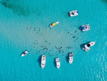 Stingray City Tours in Grand Cayman