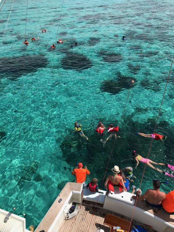 Best Snorkelling Spots in Cayman